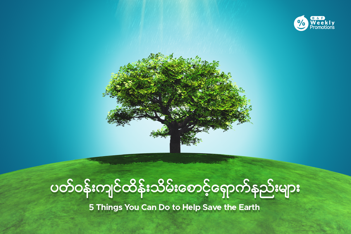5 Things You Can Do to Help Save the Earth